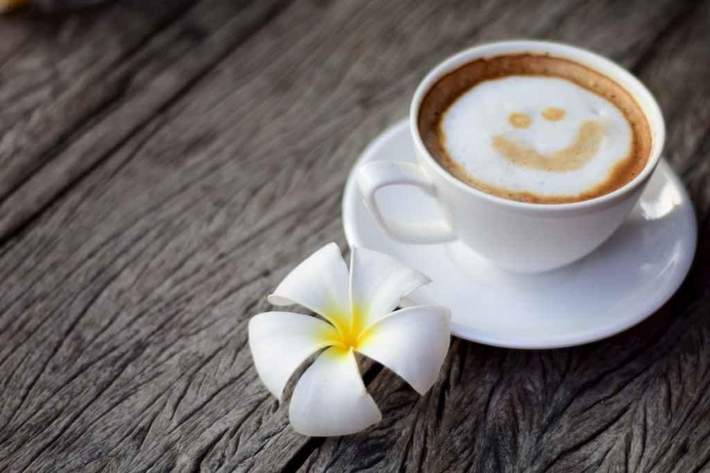 Kognifi Coffee Meetup