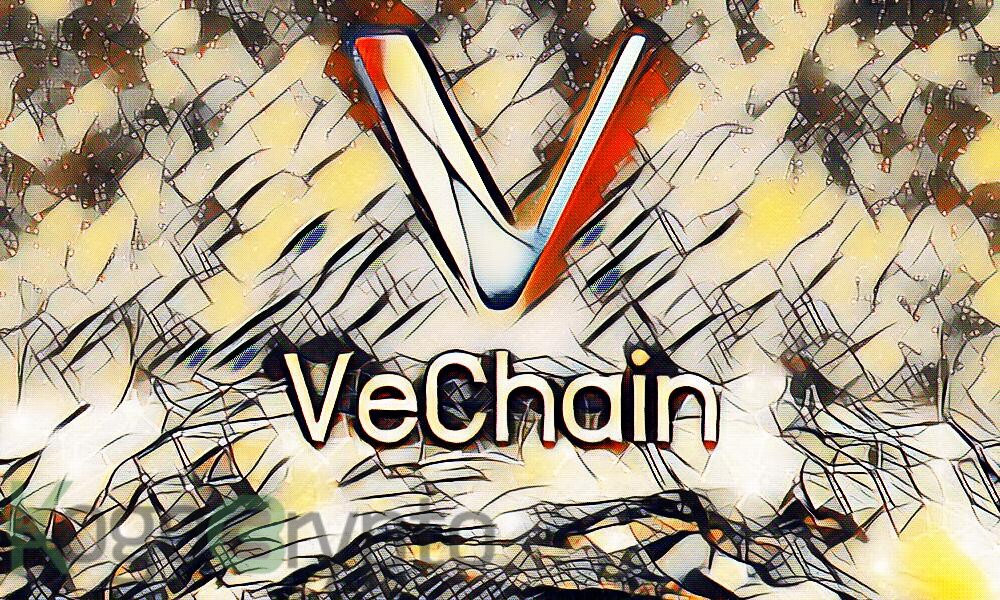 Binance Coin, STEEM, VeChain Price Movement Analysis for 25th February 2021