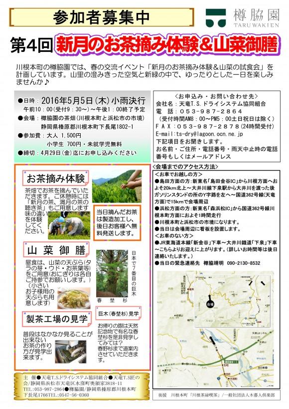 2016.03.31_お茶摘み体験