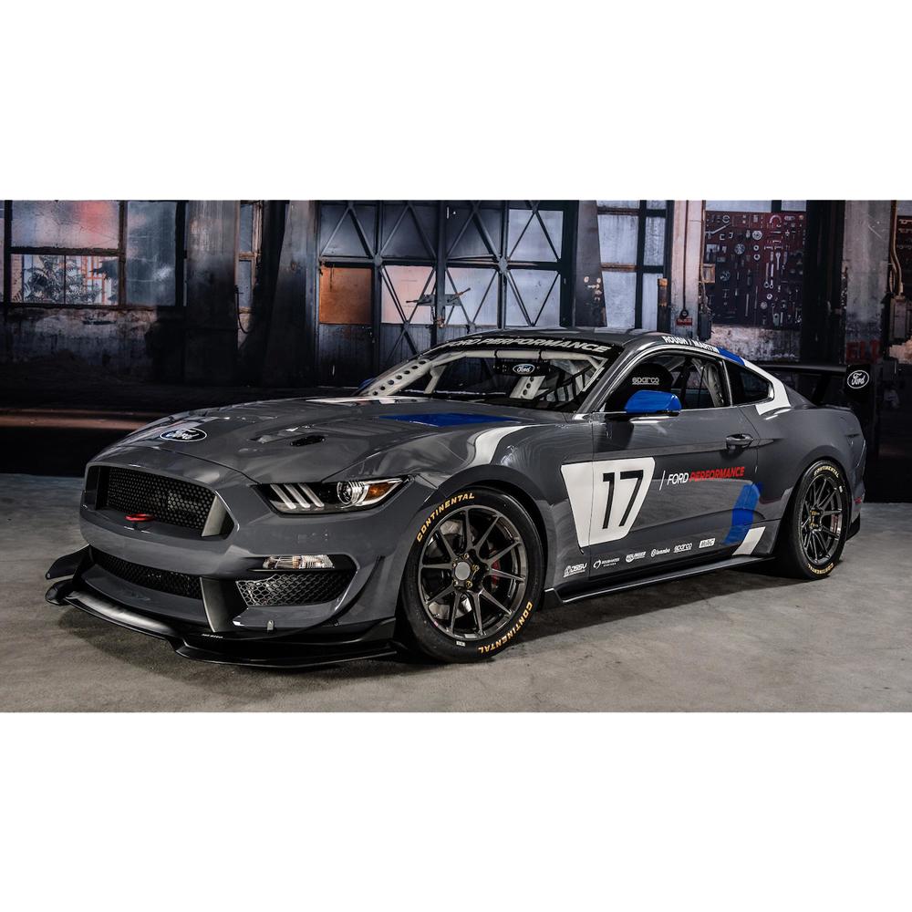 2017 Ford Mustang GT4 Racecar