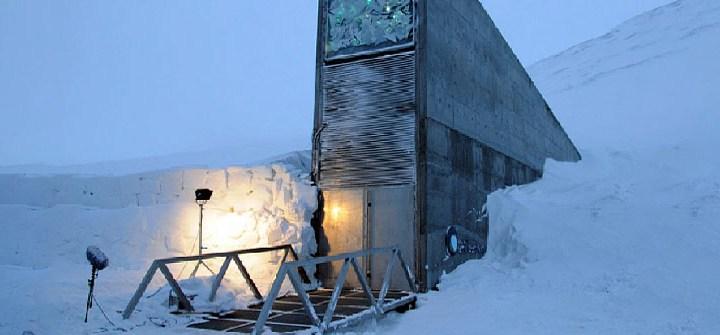 frozen ark, l'Arca di Noè tecnologica