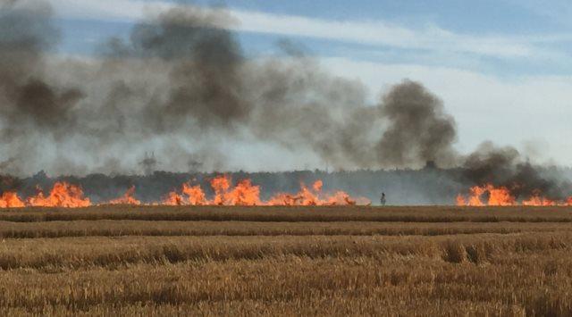 keizer wheat field fire 09132015_203727