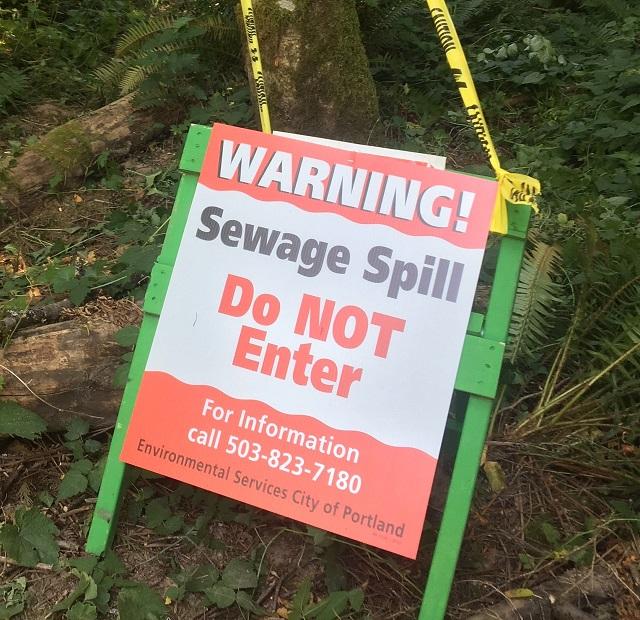 sewage spill_488355