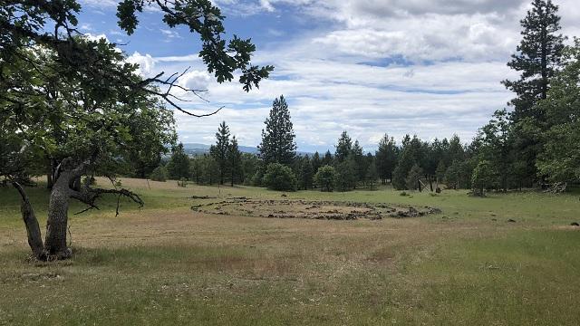Herland Forest green burial cemetery 05222019_1558569912886.jpg.jpg