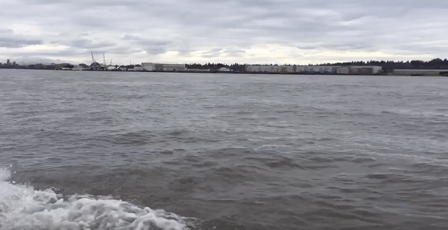 Columbia River 3_21_17_430852