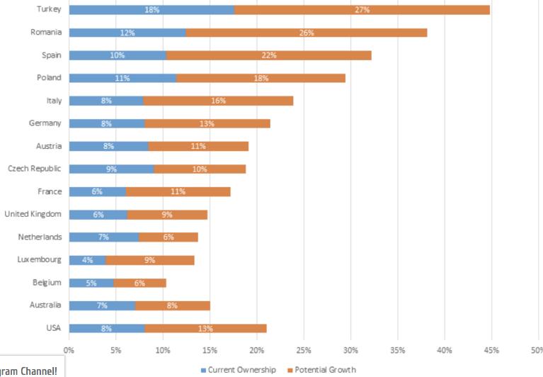 ING Bitcon Anketi