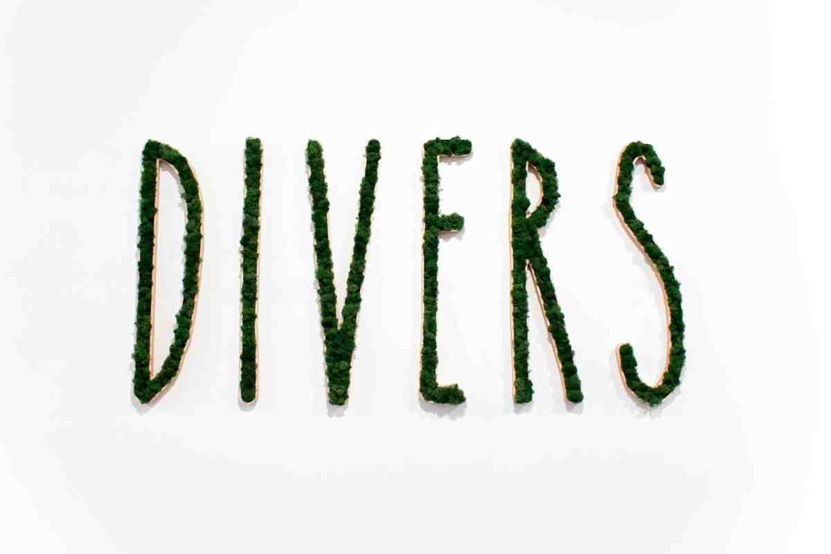 hotspot-divers-antwerpen-gezond-3