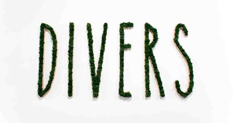 Hotspot: Divers (Antwerpen)