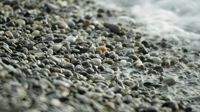KOKO Quotes: Using Perspectives To Turn Mountains Into Pebbles 1