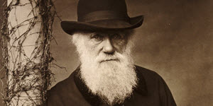 Photo of Darwin Was Right: Information and the Collapse of Macroevolutionary Theory
