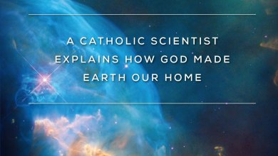 Photo of In the Beginning – A Catholic Scientist Explains How God Made Earth Our Home