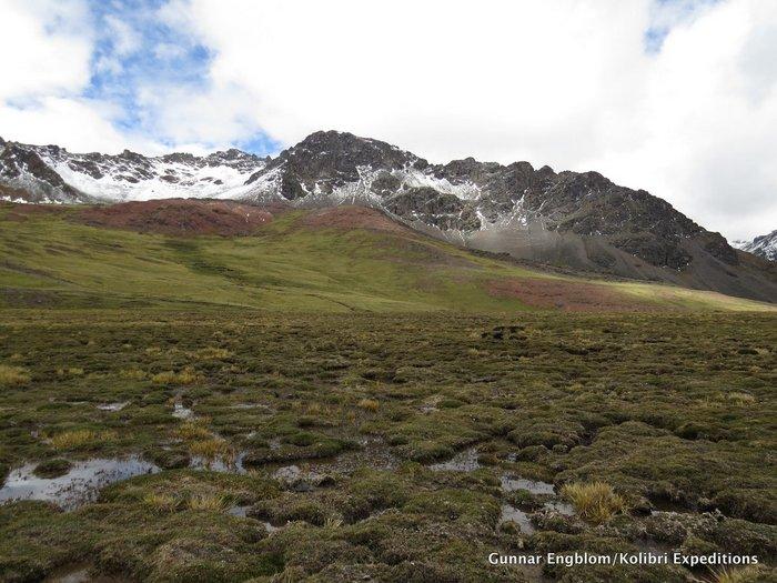 Marcapomacocha road DSP Bog