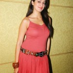 Actress-Laxmi-Rai-Hot-Stills-7