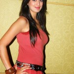 Actress-Laxmi-Rai-Hot-Stills-9