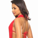 Actress-Trisha-Hot-Stills- (2)