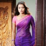 Actress-Trisha-Hot-Stills- (8)