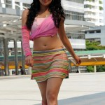 Actress Pranitha Subash Hot Stills (2)