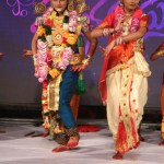 Sri Rasthu Shubha Mastu audio Function Photos (9)