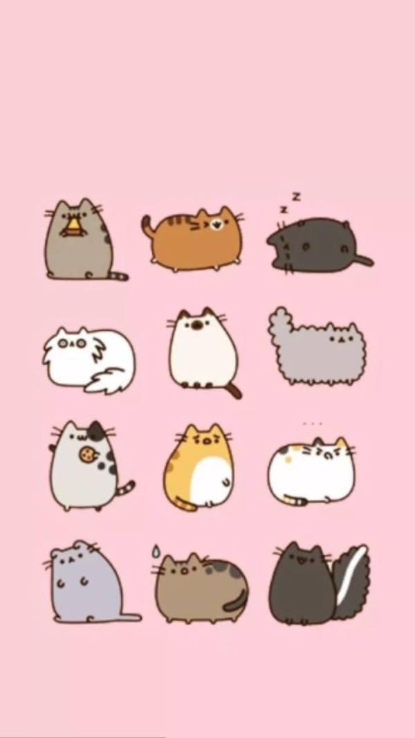 Pusheen Cats Wallpaper - KoLPaPer - Awesome Free HD Wallpapers