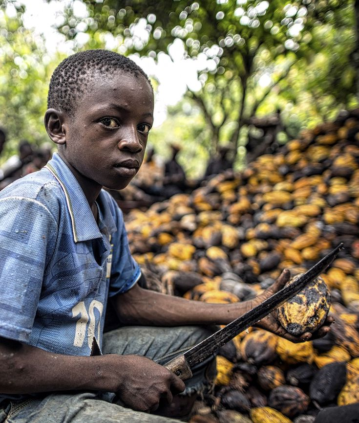 Child Labor, West Africa, Capitalism, Chocolate Production, KOLUMN Magazine, KOLUMN