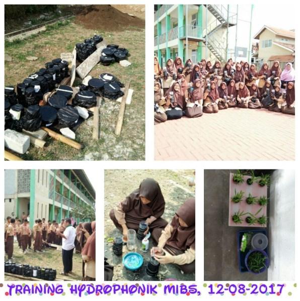 Pelatihan Hidroponik Di Mazaya Islamic Boarding School