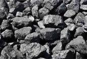 portakal kömür