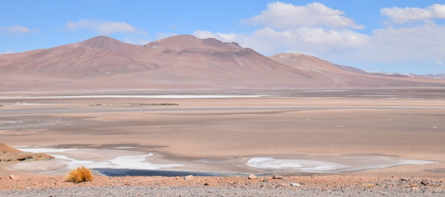 Atacama – The driest place on Earth!