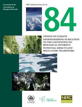 Update On Climate Geoengineering - Bildquelle: Screenshot-Ausschnitt UN-Bericht