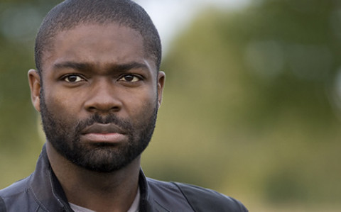 david-oyelowo Top 20 Actors and Actresses in 2012