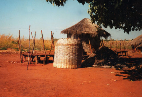 Zambia Granary Under Construction