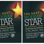The Next Nigerian Star ebook