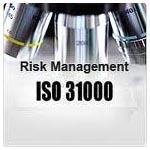 31000-2009 Risk Management Standard