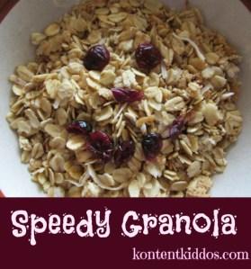 Speedy Granola