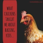 What Chickens Taught Me About Raising Kids