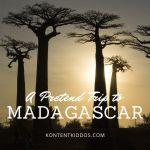 Pretend Trip to Madagascar!