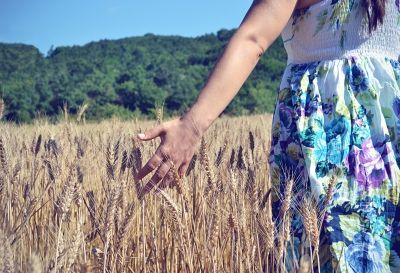 Een maand zonder tarwe – week 1