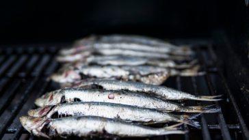 Balık Yemenin Paha Biçilemez 9 Faydası