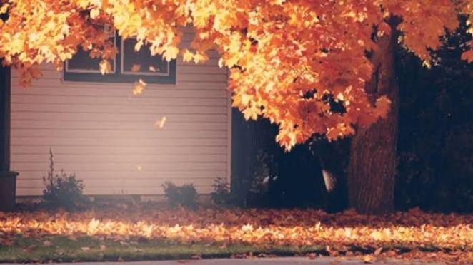 sonbaharda ev bahçesi