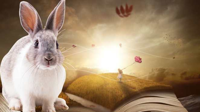 rüyada tavşan görmek