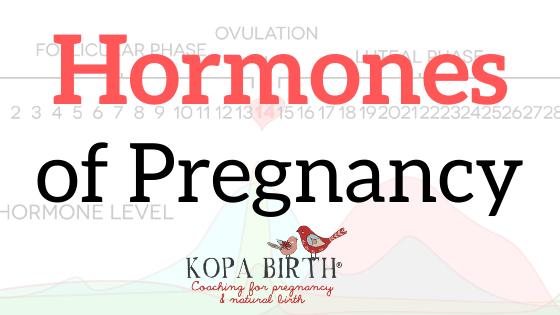 Hormones of Pregnancy-image