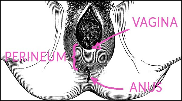 Natural Birth Tearing How To Prevent Tearing During Birth Kopa Birth