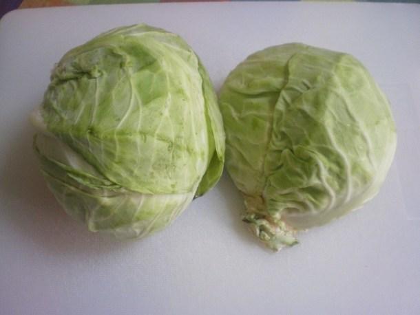 λάχανο κομμένο εικόνα