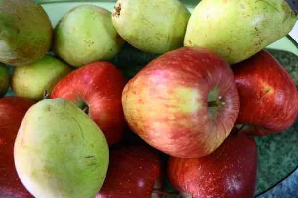 Μήλα και αχλάδια βουτύρου