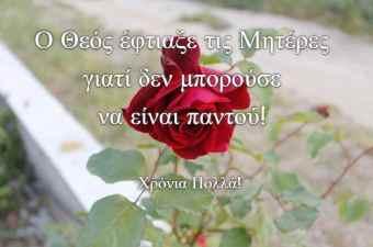 Ελληνική Πανακότα με Ανθό Νεραντζιάς