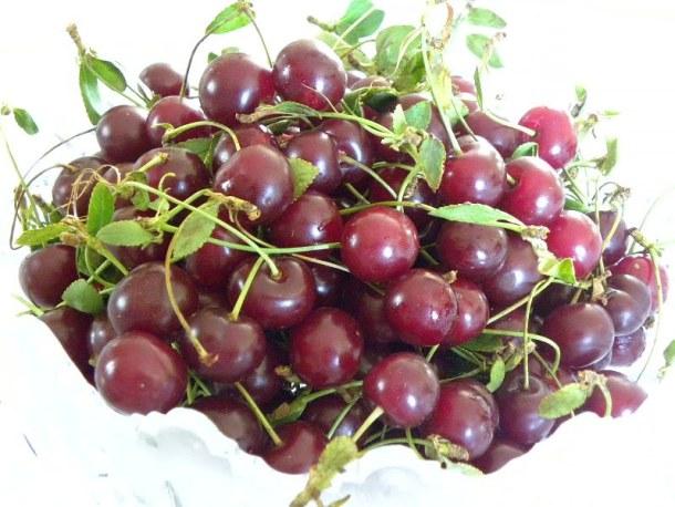 sour cherries - vyssino image