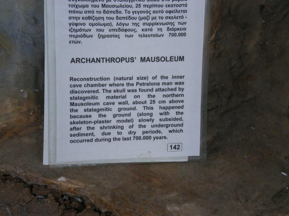 archanthrope descrption