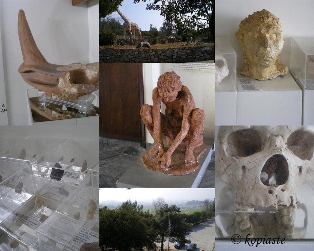 collage SPILAIO PETRALONON