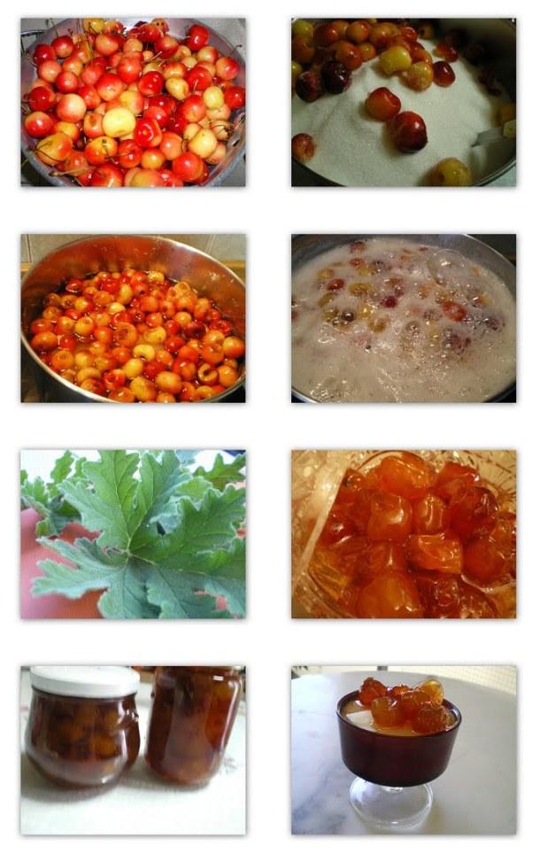 collage glyko kerassi with yellowish cherries image