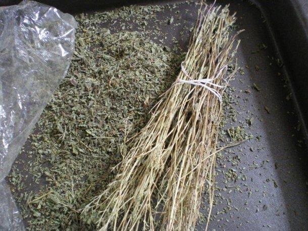 Dried oregano image