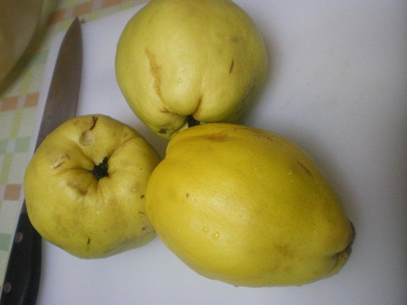 quince kydoni fruit image